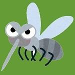 bug_ka.jpg
