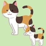 cat12_mike2.jpg