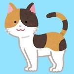 cat12_moyou_mike.jpg